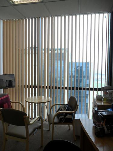 Rèm lá dọc văn phòng 19